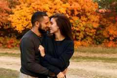 Romantic couple in love in autumn park. Above yeallow leaves Stock Images