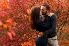 Romantic couple in love in autumn park. In th red leaves Stock Image