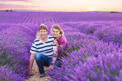 Romantic couple in love in lavender fields in royalty free stock images
