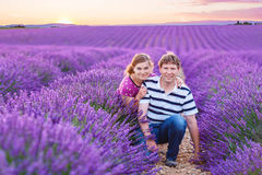 Romantic couple in love in lavender fields in Provence, France royalty free stock images