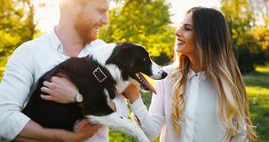 Romantic couple in love walking dogs and bonding stock image