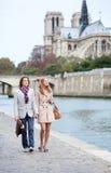 Romantic couple in Paris. Romentic couple in Paris at the embankment stock photography