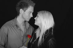 Romantic couple with rose. Black and white portrait of romantic couple; man is holding red rose Royalty Free Stock Photos
