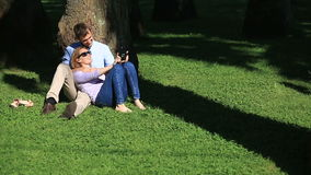 Romantic couple sitting under a palm tree. A girl on the lap of a guy. A loving couple resting in a park on the grass. Under a tree stock video footage