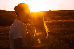 Romantic couple standing and kissing on background summer meadow sunset Royalty Free Stock Images