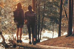 Romantic couple is standing on the log in green bright forest and watching sunset stock image