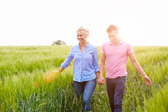 Romantic Couple Walking In Field Holding Hands. Smiling Stock Photography