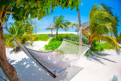 Romantic cozy hammock under coconut palm tree at tropical paradise in bright sunny summer day Royalty Free Stock Photo