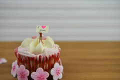Romantic cup cake in pink and white with a miniature person figurine holding a sign board on top. Romantic cup cake with pink and white frosting in a red case Stock Images