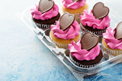 Romantic cupcakes with pink frosting Stock Images