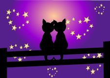 Romantic cute kittens Royalty Free Stock Images
