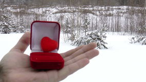Romantic date. Valentine's day. The video shows footage on the theme of Valentine's Day. Love stock video footage