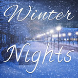 Romantic decoration and winter nights quote Stock Photos