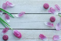 Romantic delicate composition with pink flowers and macaroon cakes. stock photo