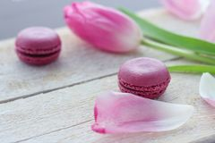Romantic delicate composition with pink flowers and macaroon cakes. stock photography