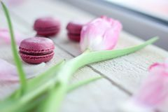 Romantic delicate composition with pink flowers and macaroon cakes. stock photos