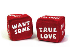 Romantic Dice 3: Want Some True Love Royalty Free Stock Images