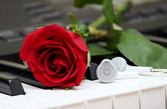 Romantic digital instrumental music. Piano, red love rose and a pair of headphones or earphones with copy space that represents romantic and lovely musical Royalty Free Stock Images