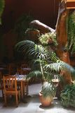 Romantic dining in a jungle restaurant, La Palma, Spain  Royalty Free Stock Photos