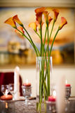 Romantic dinner Stock Images