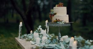 Romantic dinner composition in evening forest. Tasty berry two-tiered cake at table with leaves, candles and flowers. 4k stock footage