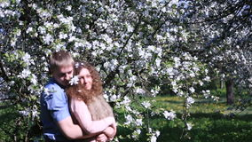 Romantic dreamed couple in blossoming cherry orchard with lots of flowers. Happy young man embraces his girlfriend with stock footage