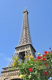 Romantic Eiffel tower Stock Images