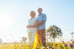 Romantic elderly couple enjoying health and nature in a sunny day of summer. Low-angle view of a romantic elderly couple enjoying health and nature while royalty free stock photos