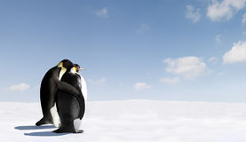 Romantic Emperor penguins. Icy Antarctica landscape with two Emperor penguins leaning together romantically Stock Photo