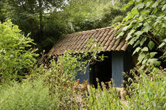 Romantic English cottage garden. With shed Royalty Free Stock Photos