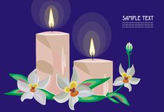 Romantic evening. Vector drawing of the candes and orchids Stock Photos