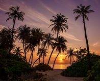 Magic Tropical Sunset in the Maldives stock photos