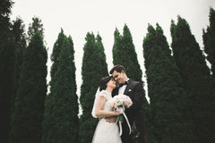 Romantic, fairytale, happy newlywed couple hugging and kissing in a park, trees in background Stock Photography