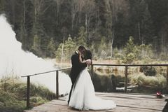 Romantic, fairytale, happy newlywed couple hugging and kissing in a park, trees in background Royalty Free Stock Images
