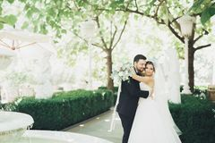 Romantic, fairytale, happy newlywed couple hugging and kissing in a park, trees in background stock images