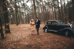 Romantic fairytale wedding couple kissing and embracing in pine forest near retro car. Royalty Free Stock Photos