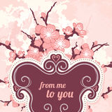 Romantic  floral background with sakura Stock Photography