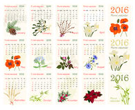 Romantic floral calendar for 2016 with realistic beautiful flowers. Royalty Free Stock Images