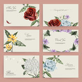 Romantic floral cards collection design Royalty Free Stock Images