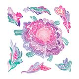 Romantic Floral Design Elements Set Stock Photo