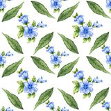 Romantic floral seamless  pattern bouquet rose blue flowers and. Seamless  pattern bouquet rose blue flowers and plant watercolor gouache hand draw Romantic Stock Photography