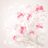Romantic Flower Background Royalty Free Stock Photography