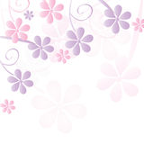 Romantic flower background  Stock Image