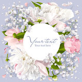 Romantic flower background. Romantic flower invitation or greeting card for weddings, Valentine's Day and other events with Peonies, leaves, Gypsophila and round Stock Photography