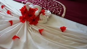 Romantic flower petal arrangement on a hotel bed. Towel decoration in hotel room, towel birds, swans, room interiorn stock images