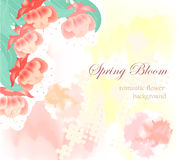 Romantic Flowers on abstract background. Romantic Flowers on abstract wedding background Stock Photos