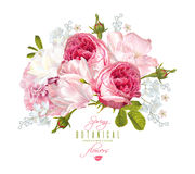 Romantic flowers composition Royalty Free Stock Photos