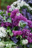 Romantic flowers from wedding decor with Lilac.  Royalty Free Stock Image