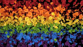 Flying romantic iridescent colorful rainbow rose flower petals alpha transition