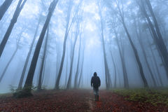 Romantic foggy forest and dark man Stock Image